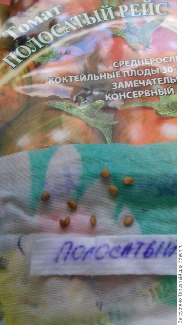 20 марта.Семена набухли  и готовы к посеву