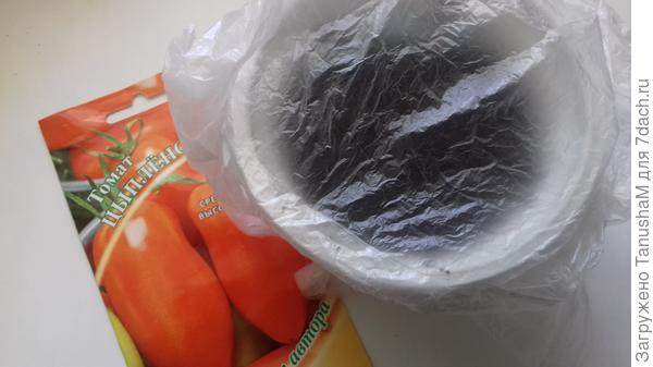 Упакована в полиэтиленовый пакет и поместила в теплое место для проращивания  ( температура 25-27°С)