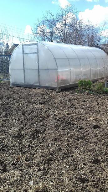 и помидорное счастье готово!!
