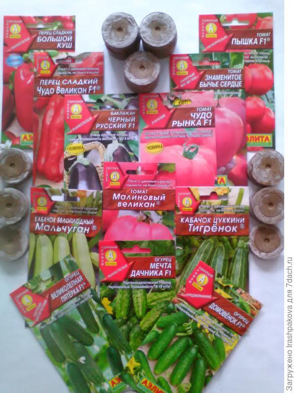 Пакетики с семенами и торфяные таблетки
