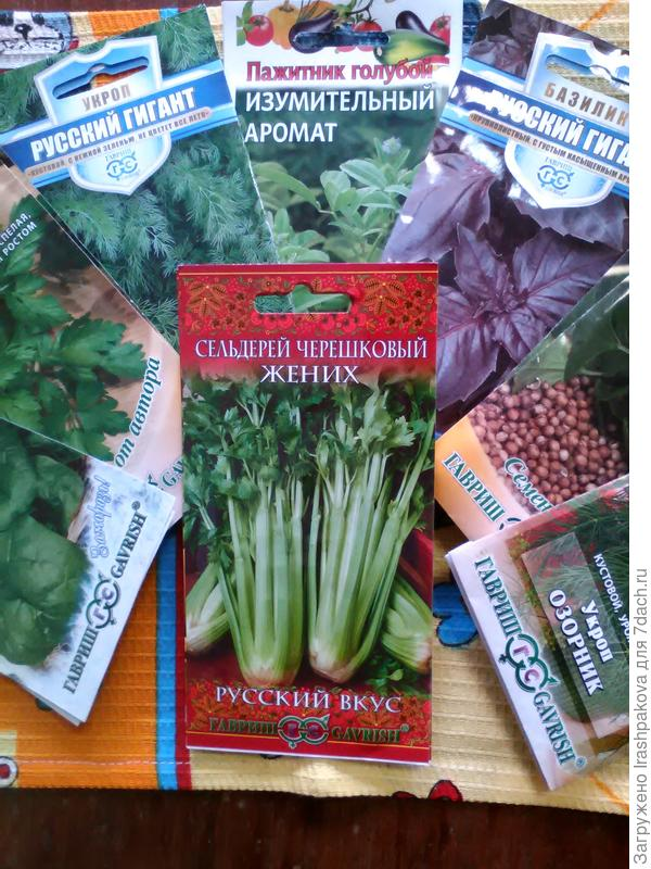 Мои зеленушки