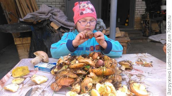 Дочка помогает чистить грибочки