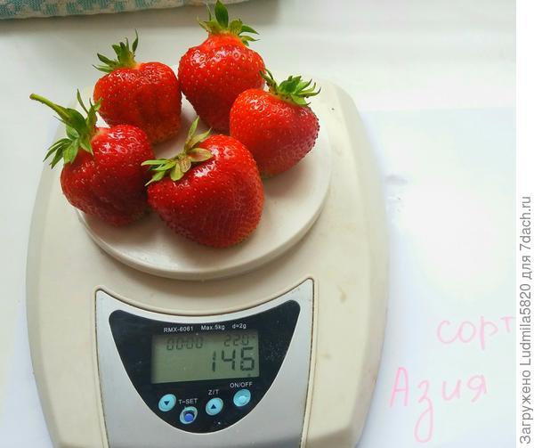 Хороший вес