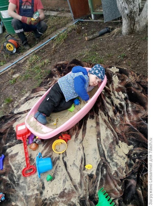 Как шиншила, купается в песке