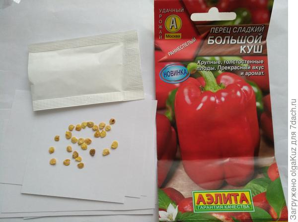 Количество и размер семян перца Большой Куш
