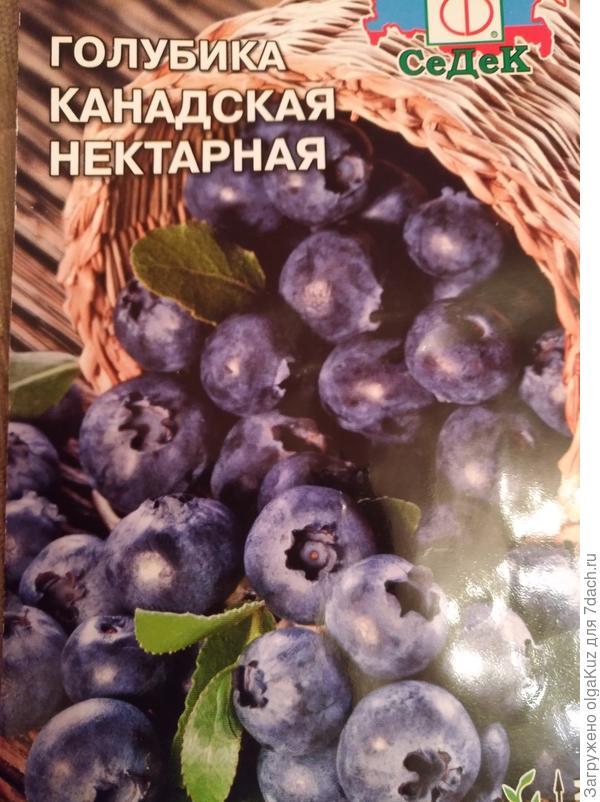 Семяна, которые я купила