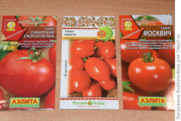 остальный томаты ждут своего часа