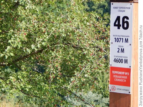 Вешка(станция) терренкура. На любом маршруте они стоят через 100 метров.