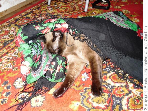 Стянул на пол мою шаль.