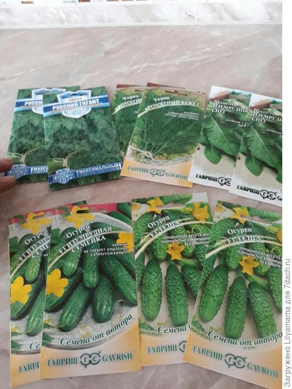Мои семена (зелень и огурчики) для тестирования!