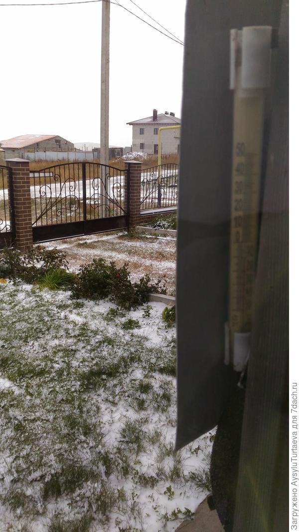 Первый снег.10 октября 2017.