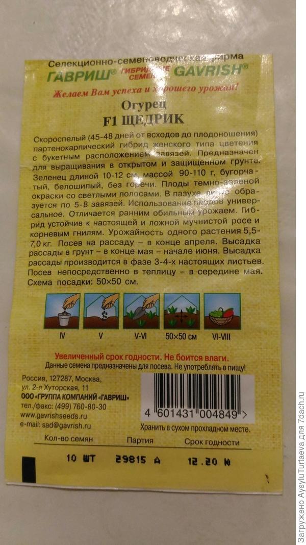 заявленное описание огурцов Щедрик