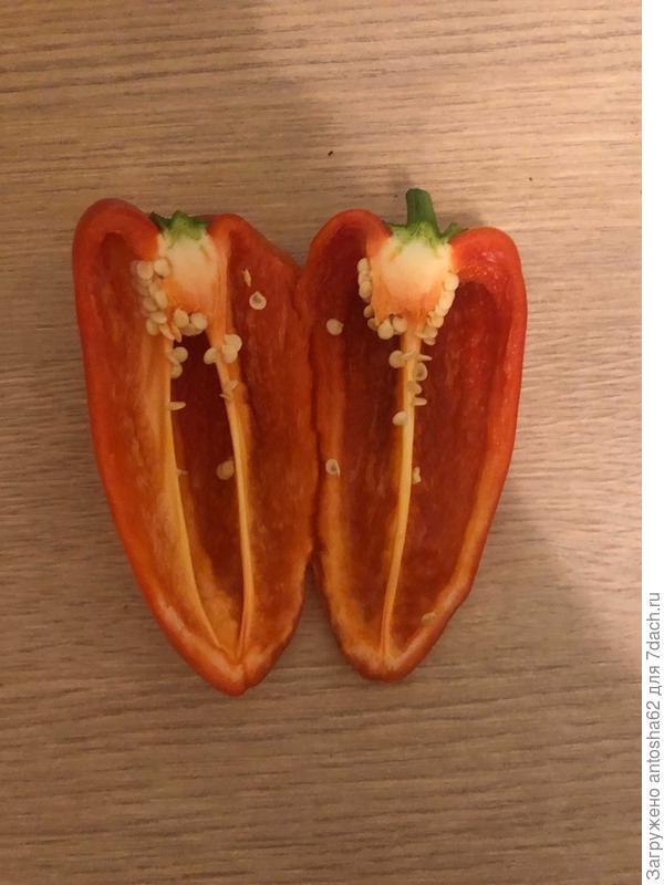 Сладкие перцы 'Шашлычный' F1 и 'Красный богатырь' F1 дали урожай!
