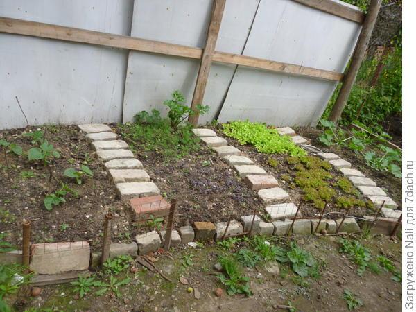 2012 год. Сначала там был небольшой огородик.