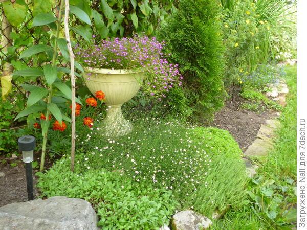 """Единственные пластмассовые """"представители"""" в моем саду - вазоны. Но тут уж никуда не деться, каменные слишком дороги."""