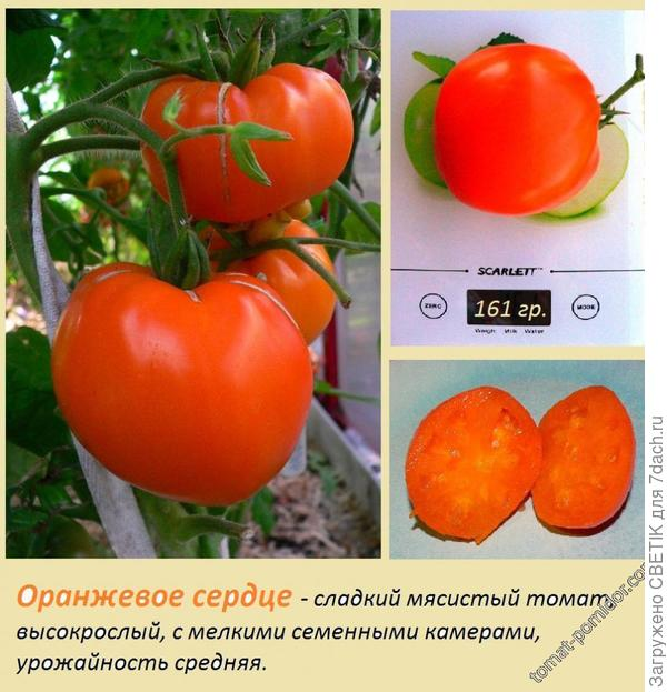 Оранжевое сердце