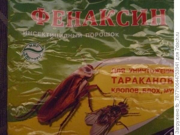 вот отличное средство от садовых муравьёв