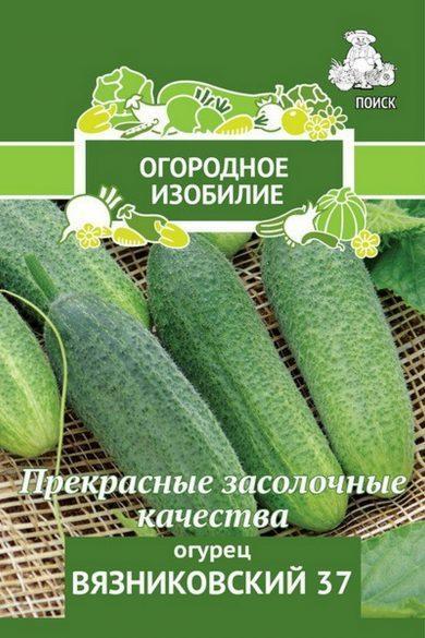 Огурцы сорта Вязниковский