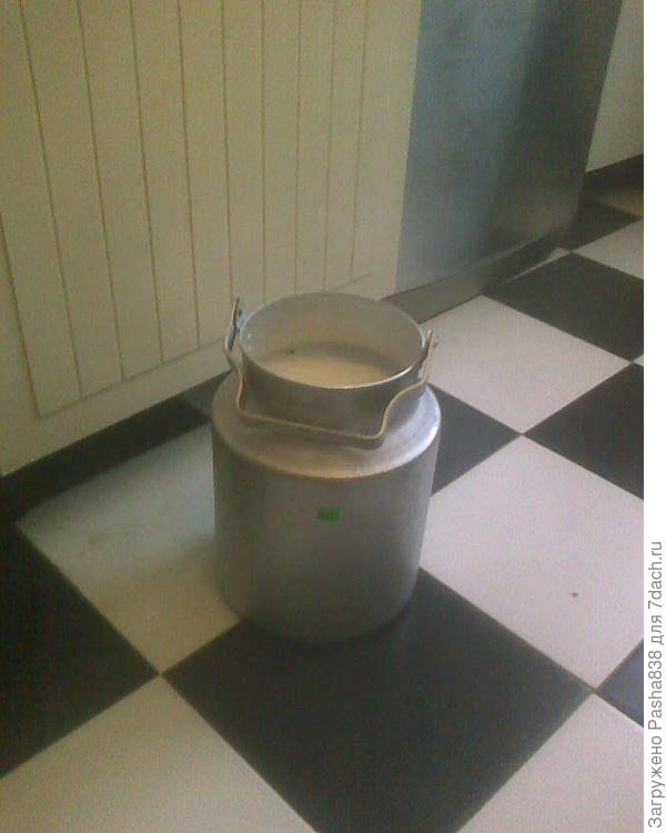 Дежурный бидончик. В нем восемь с чем-то литров молока. Дою в трехлитровый, в этот переливаю, потому ухожу - этот полный и трехлитровый с чем-то, бывает тоже полный.
