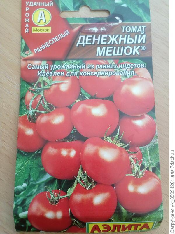 томат Денежный мешок