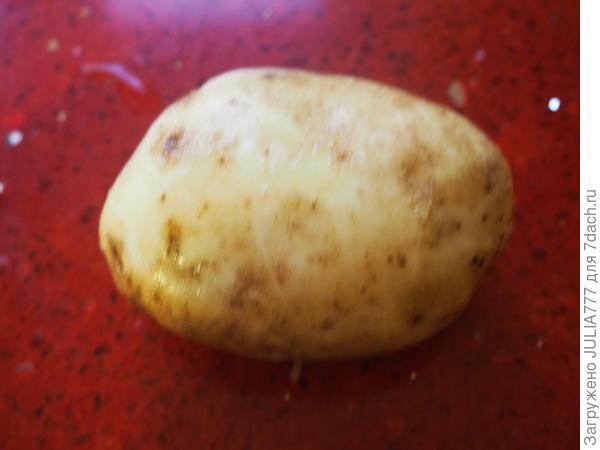 Простая картошина.