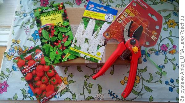 Подарки от Seedspost