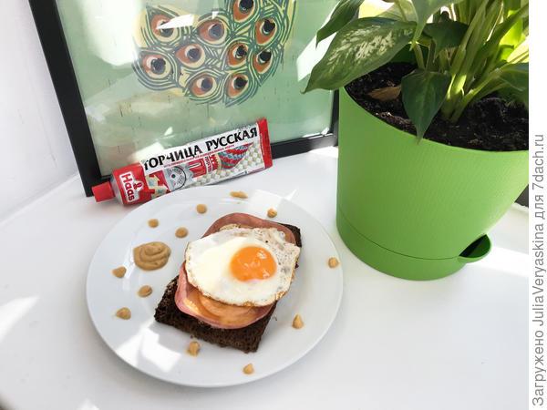Идеальное блюдо для завтрака - аппетитный крок