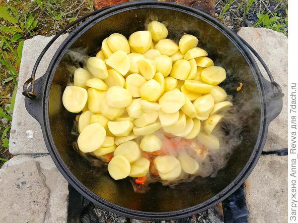 Добавленный картофель