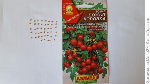 Семена из пачки