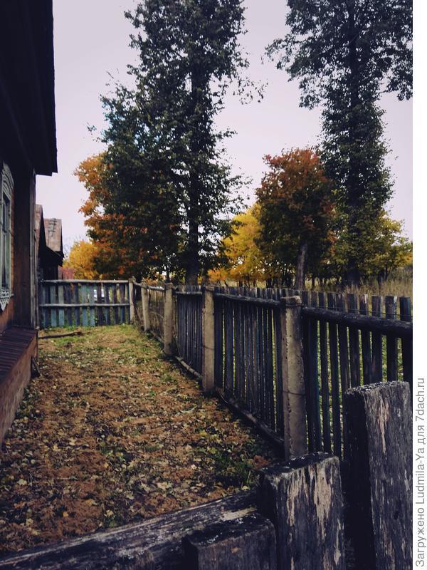 14. Палисадник перед старым домом (с переходом на участок)