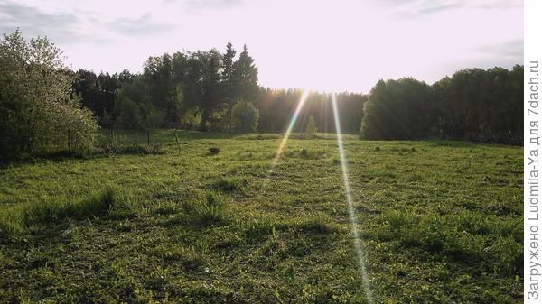 17. Еще одно фото видовой картины с террасы будущего фото. Налево после высоких кустарников (разрослась соседская вишня) - поперечная граница с соседом слева (весной посадили живую изгородь)