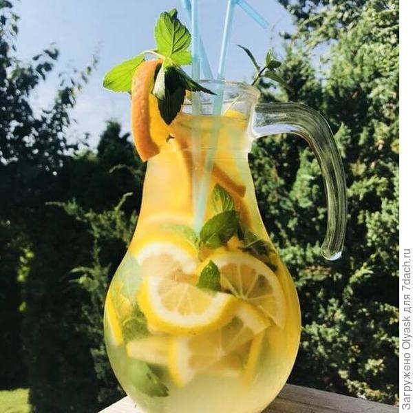 Домашний лимонад)