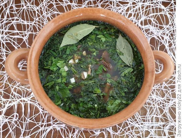 Томленая грибная солянка - пошаговый рецепт приготовления с фото
