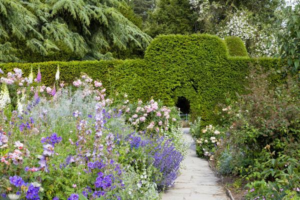 Как подобрать растения для садов в разных стилях?
