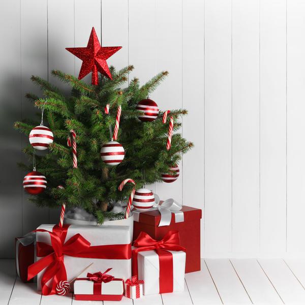 Ветви могут быть украшены искусственным снегом или блестками, но лучше, если хвоя останется без декоративного напыления