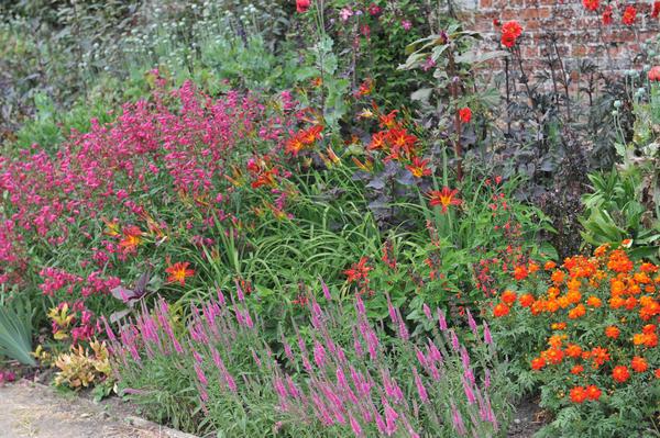 Начните садовый сезон с планирования цветников