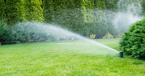 Для просторной зеленой лужайки нужен хороший полив