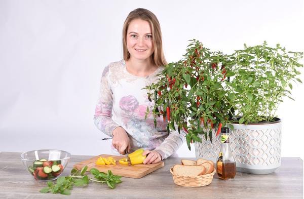 Выращивайте огород на подоконнике вместе с нами!
