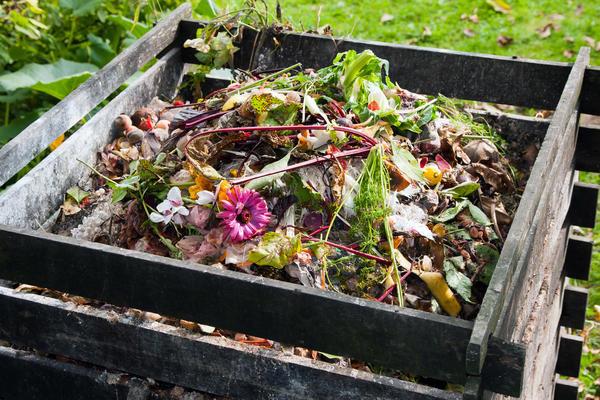 Готовим биогумус из пищевых отходов в домашних условиях