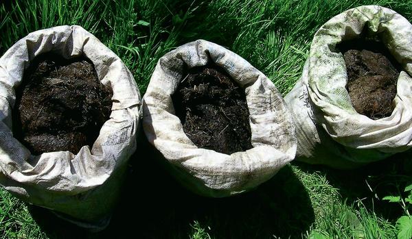 Чем заменить навоз: натуральное удобрение из скошенной травы