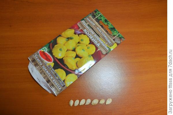 Семена патиссона Копейка