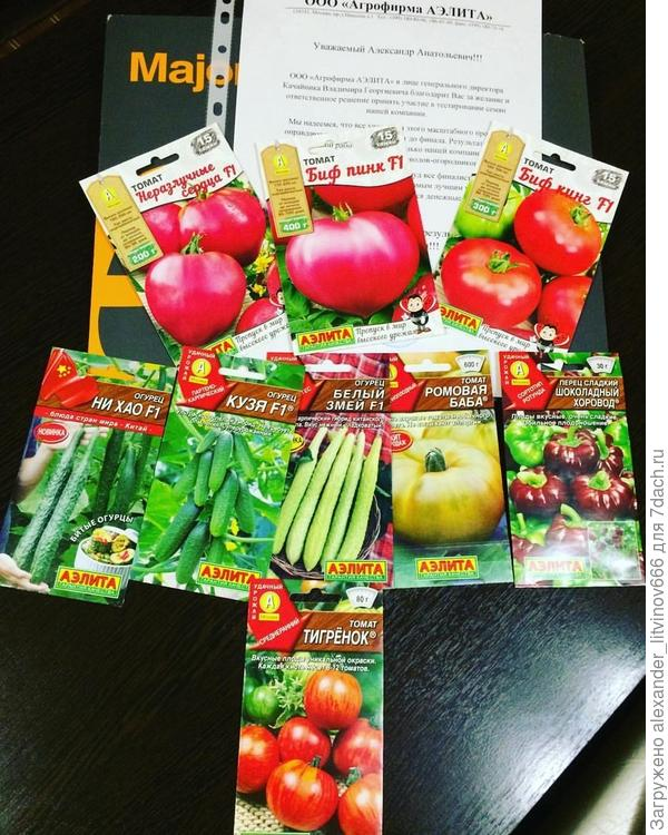 Семена овощей для тестирования от агрофирмы АЭЛИТА и 7 дач
