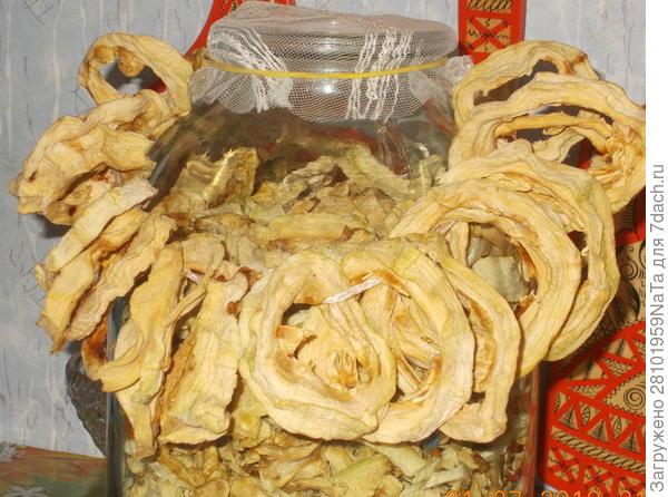 сушеные кабачки