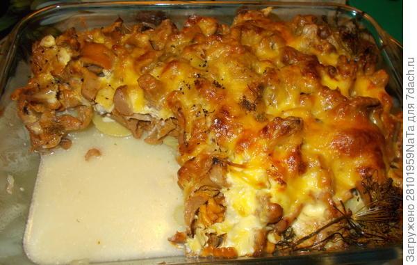 Лисички, запеченные с картофелем и сметаной - пошаговый рецепт приготовления с фото