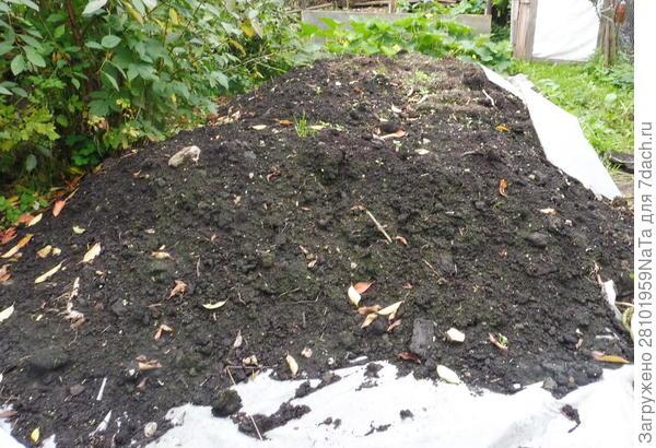 Готовим осенью грунт для грядок и рассады