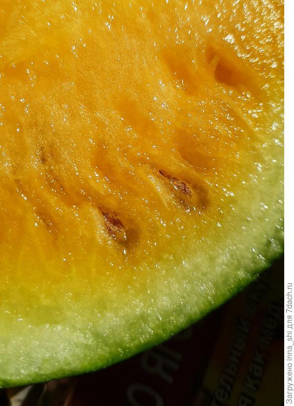 """Кусочек солнца, кусочек арбуза """"Чудо ягода"""" от Аэлиты"""