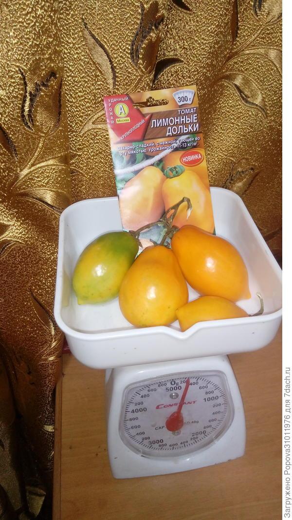 Томат 'Лимонные дольки'
