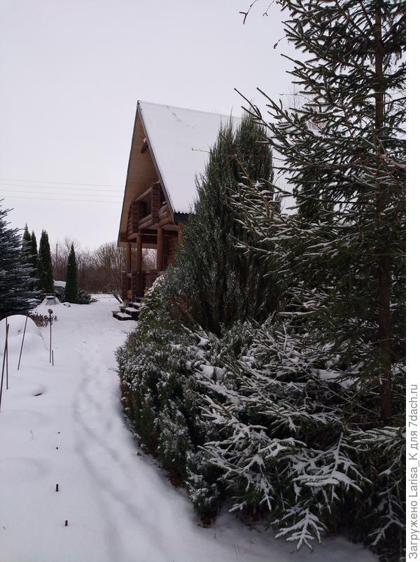 Снег, снег, снег...