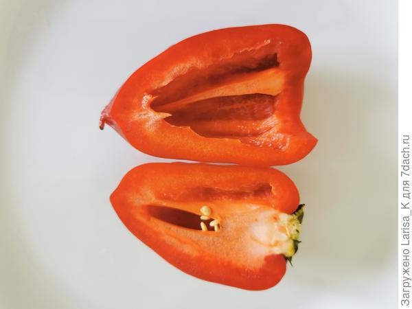 Перец 'Здоровячок' F1. Цветение и плодоношение