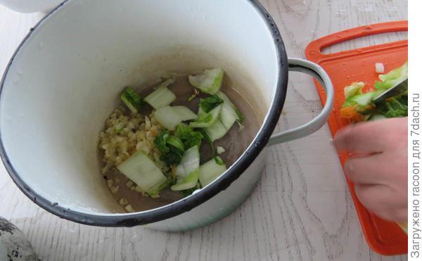 Кимчи со своего огорода. Рецепт приготовления пекинской капусты - пошаговый рецепт приготовления с фото
